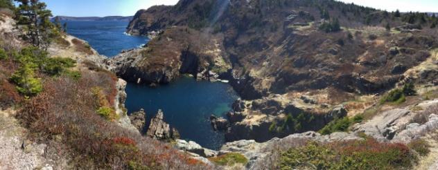 Cuckolds Cove, St. John's NL